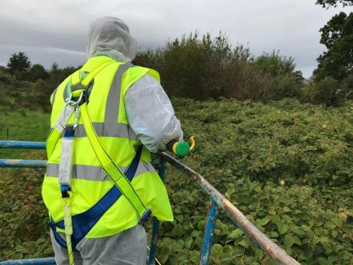 Cherry Picker Spraying - Esmonde Road Wexford